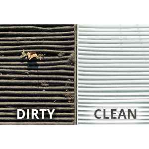 Toyota Air Filter Service